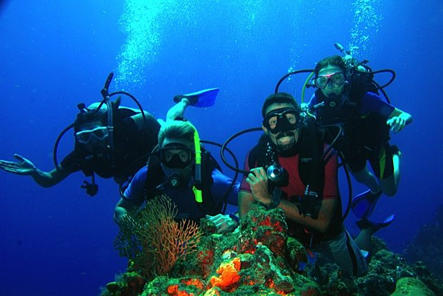 Reef Life Cozumel offers the best in Scuba Diving